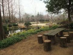 池の庭・ベンチ周辺