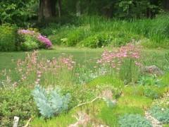 スクリーベッドから芝生の庭